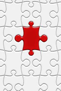 puzzle300